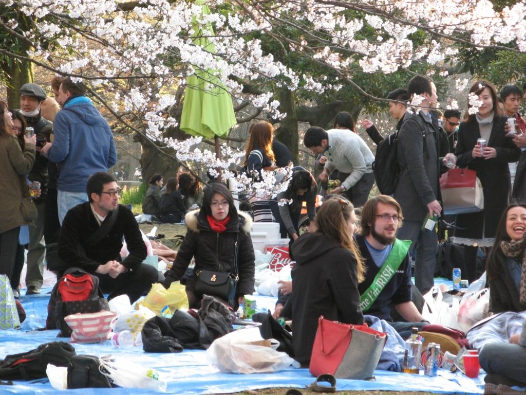 Токио. Первая сакура парка Йойоги в марте