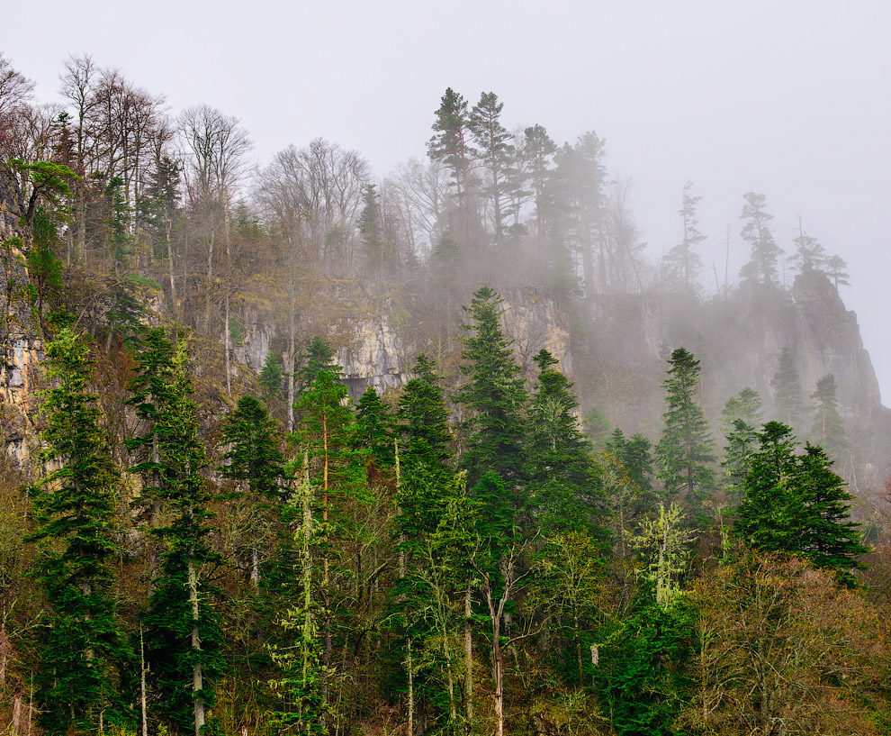7. И ехать пришлось в сплошном тумане, влажном настолько, что на руке сразу конденсировалась вл