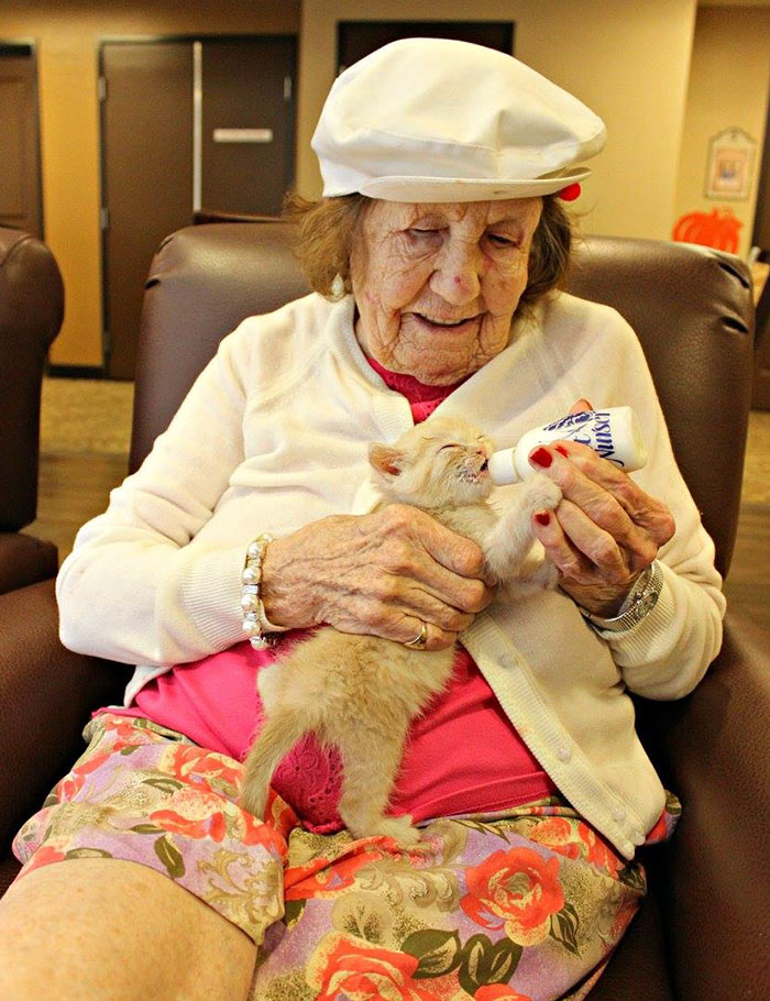Радость, которую пожилые люди получают, кормя и лаская беспомощных новорожденных котят, огромна. И к