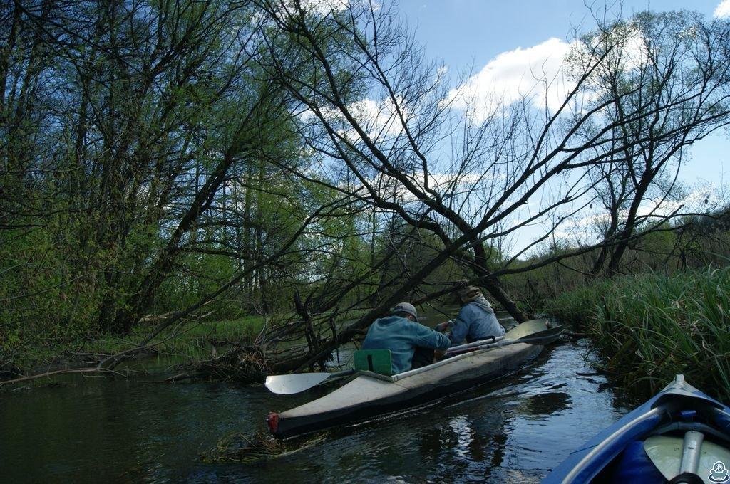Сплав на байдарках по реке Боромля