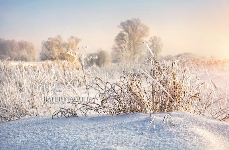 Снежные кудряшки