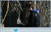 http//img-fotki.yandex.ru/get/128227/40980658.126/0_1369f9_54133988_orig.png