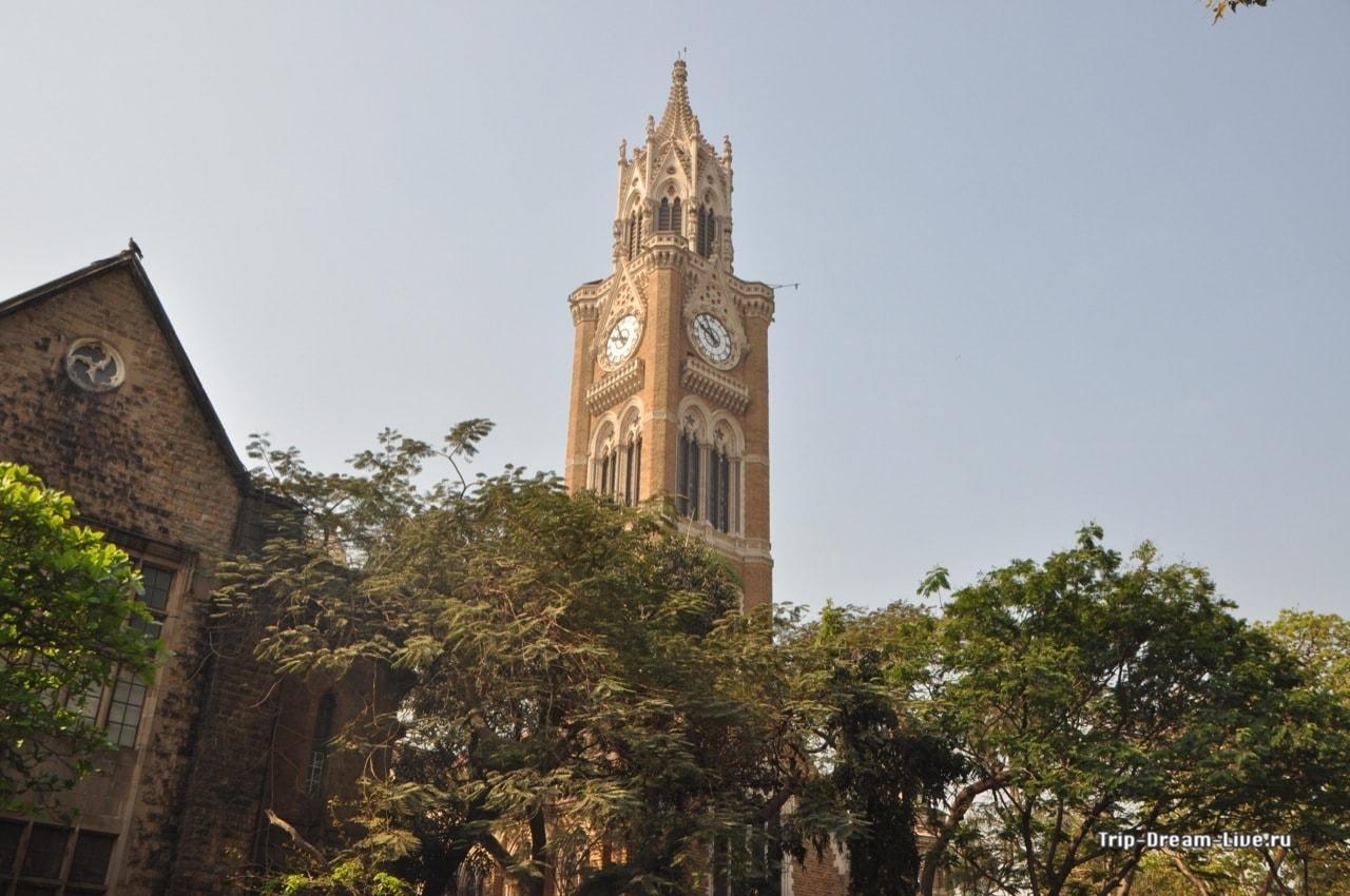 Университет Мумбаи (University of Mumbai, Бомбейский Университет)