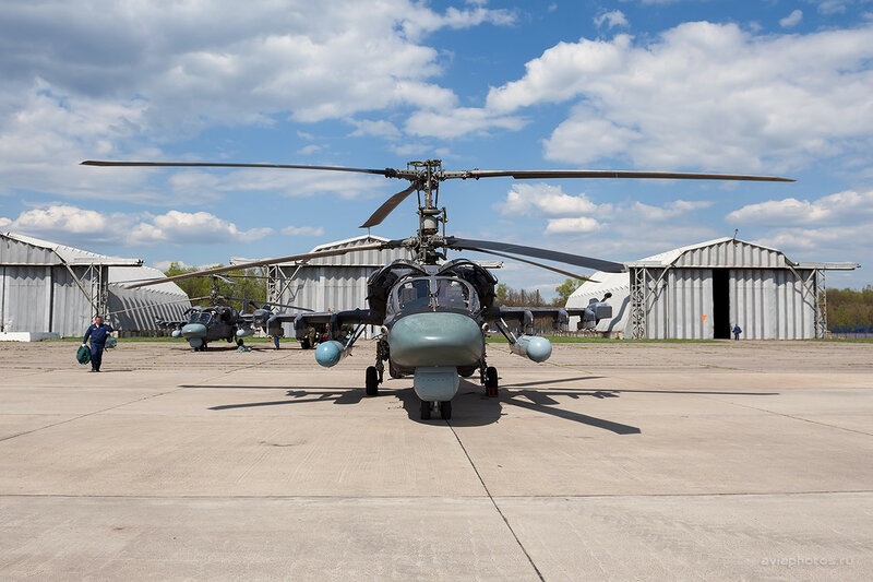 Камов Ка-52 ВКС России D701184