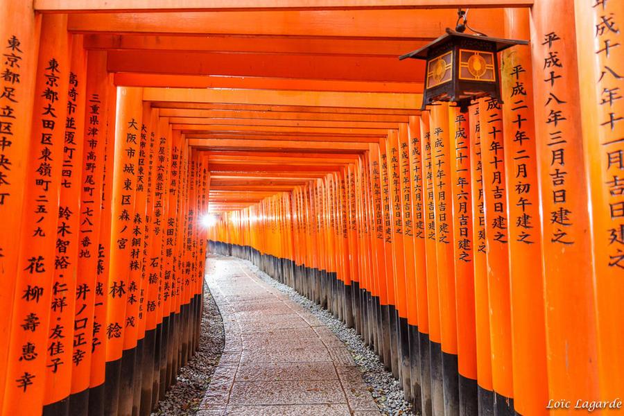 15. Красные тории вдоль дороги к храму Фусими Инари в Фусими