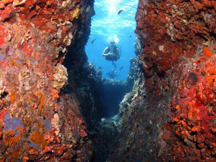 1. У берегов острова Солт когда-то давно затонул британский почтовый корабль, а вместе с ним и 125 ч