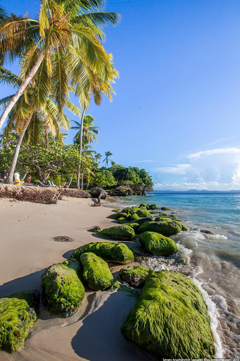 20. Но самыми известными и желанными в Доминикане являются пляжи острова Саона. Их здесь доволь