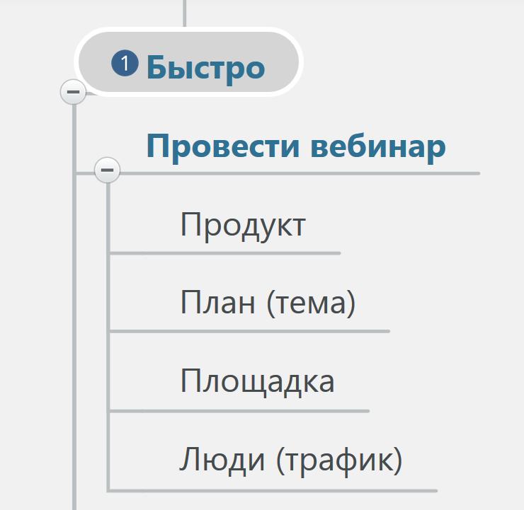 как провести свой вебинар