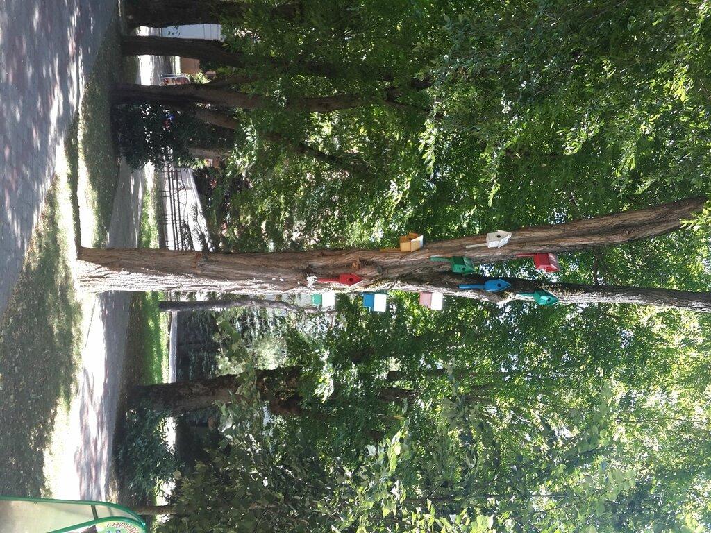 Пешие и велопрогулки по Краснодару - ищу компаньонов - Страница 4 0_80fc0_1e2d16dc_XXL