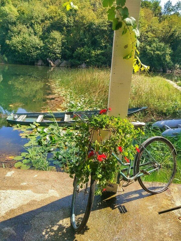 Каруч на Скадарском озере