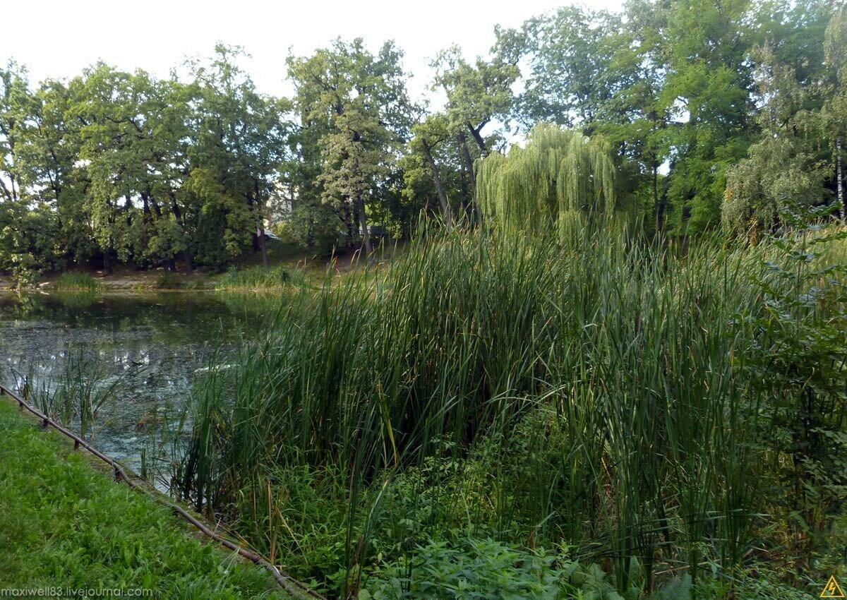 Парк «Нивки»-2 (Частина 2): Західна частина