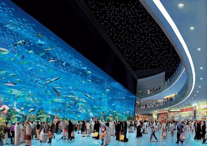 Если аквариум — то такой.