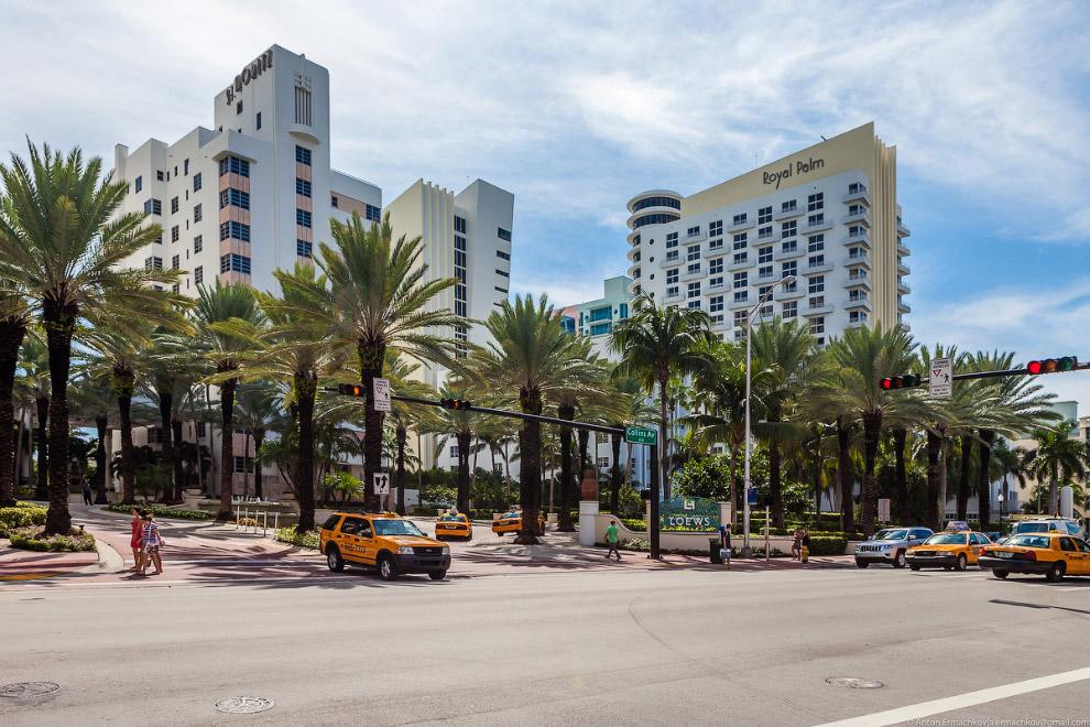 16. Район Майами-Бич известен как одно из самых гламурных мест в мире из-за своей бурной ночной