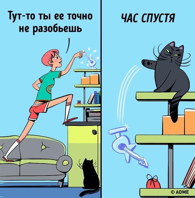 Стечением времени кот достигнет любой поверхности, накоторой есть хоть что-нибудь представляющее д