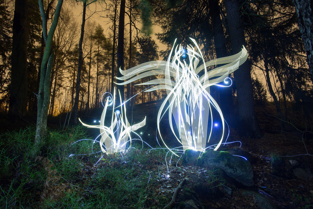In-Camera Light Paintings by Hannu Huhtamo Sprout in the Darkness Like Alien Blooms (7 pics)