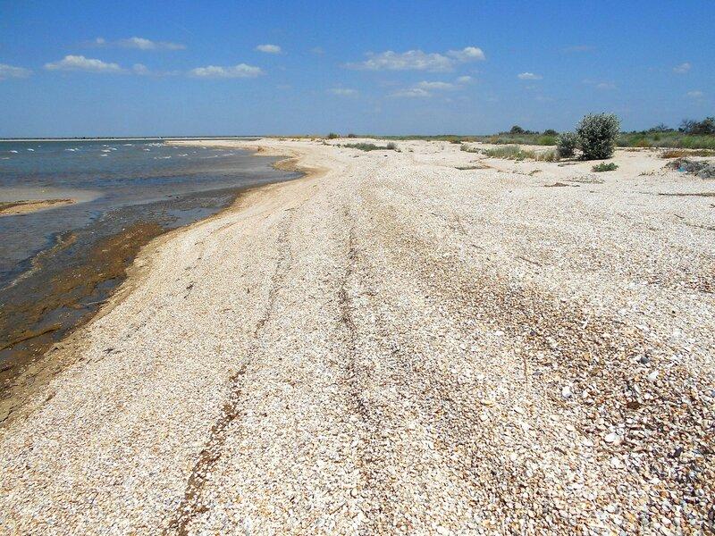 Дали песчаные ... DSCN6836.JPG