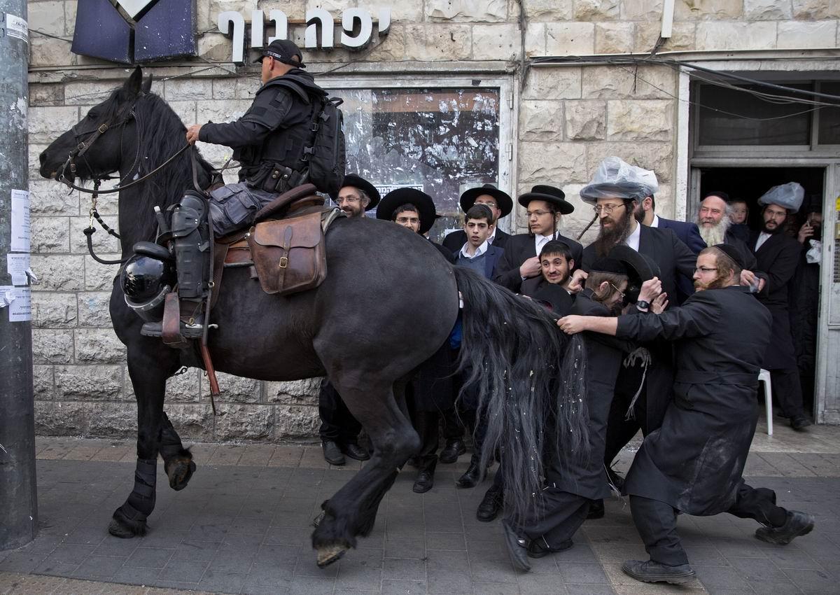 Потяни коня за хвост: Еврейские ультра ортодоксы против израильского полицейского