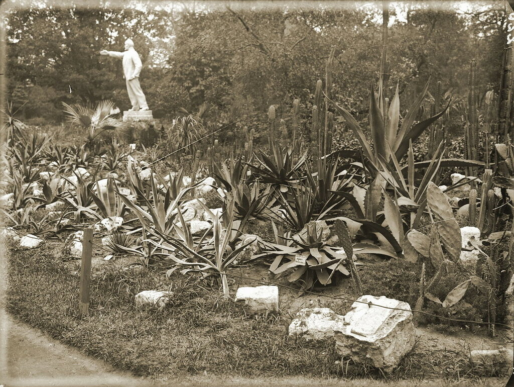 463333 В Ботаническом саду МГУ 1930-е.jpg