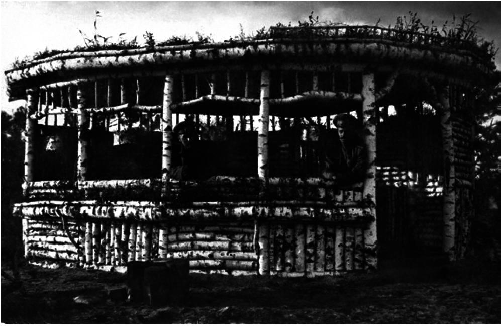 99. 1916. Русские офицеры в берёзовой беседке на тыловой позиции. Лето. Барановичское направление, Минская губерния
