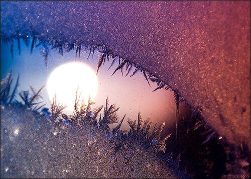 око в морозном лесу