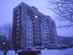 Бухарестская ул. 25