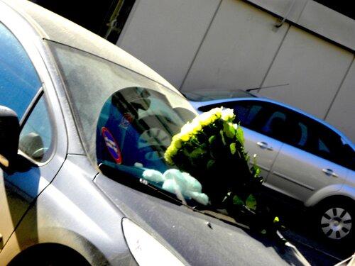 Картинки весны парень с цветами