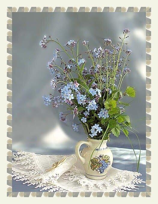 Цветки...  Более подробно о незабудках можно прочитать здесь в ЭДСР :http://flower.onego.ru/voda/myosotis.html.