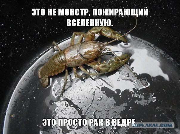 0_10642c_632f7f15_orig.jpg