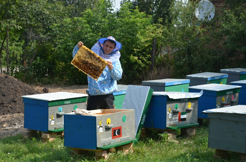 «День Бджоляра»
