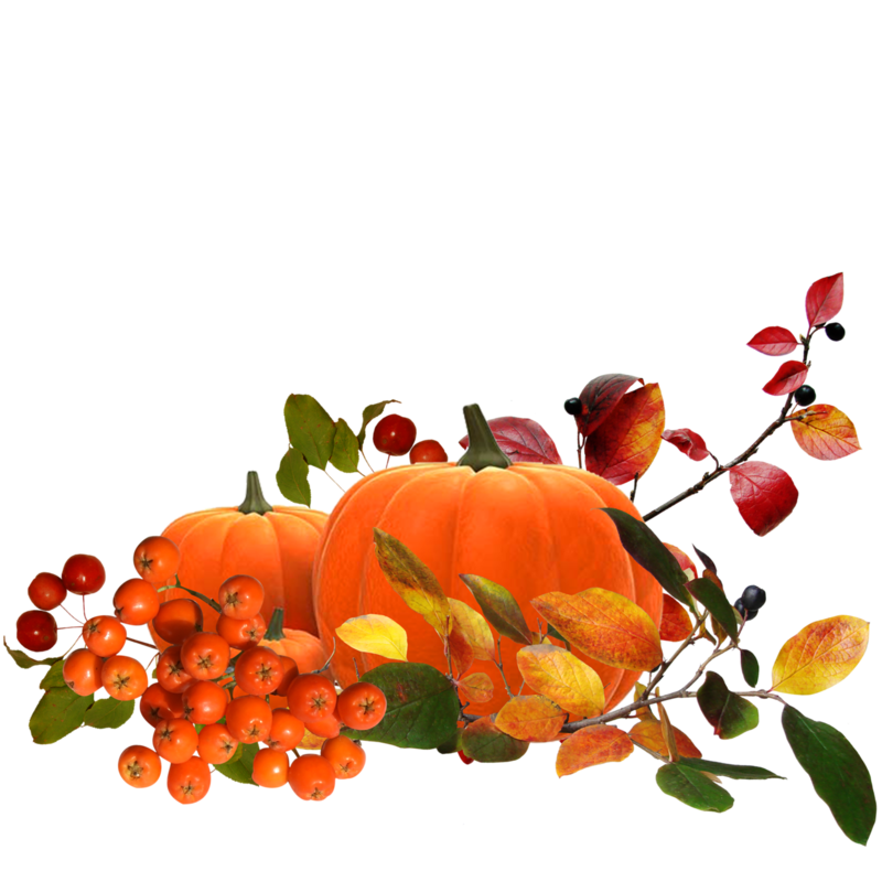 autumn clusters 4.png