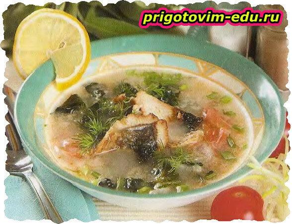 Щи рыбные из щавеля и шпината