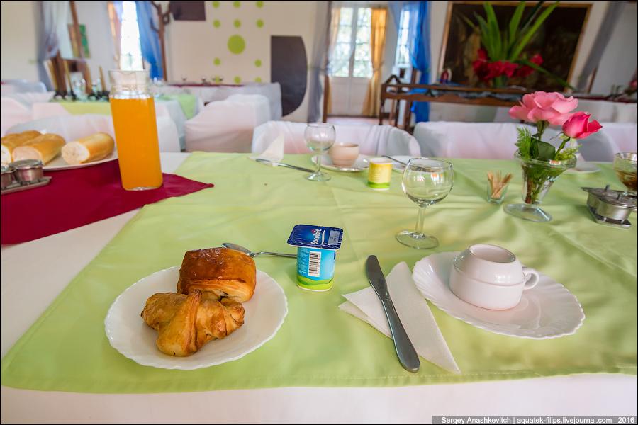 Самый отвратительный завтрак