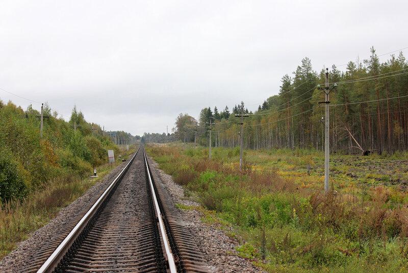 Перегон Земцы - Подсосенка и болота