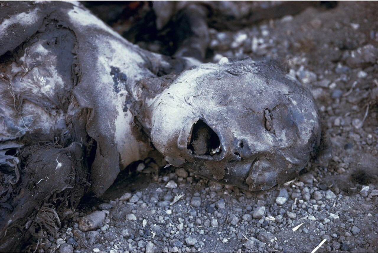 Мертвый солдат