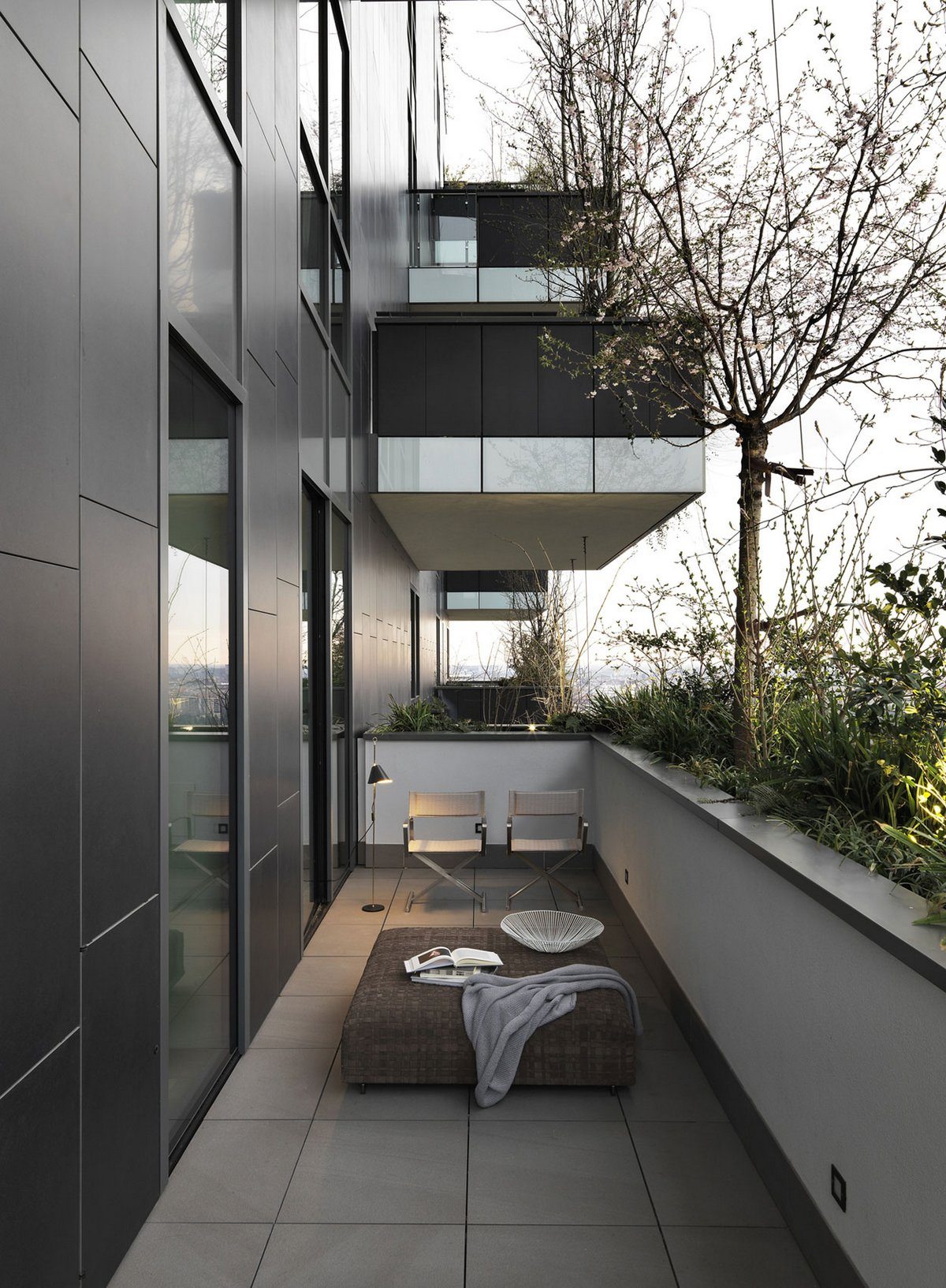 Дерево на балконе квартиры