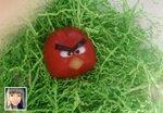 Angry Birds_Комарова Анастасия.jpg