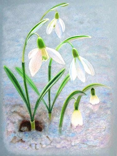 Весна пришла - Носов Иван Максимович, 11 лет, Тема -- Рисунок, г. Шатура.jpg
