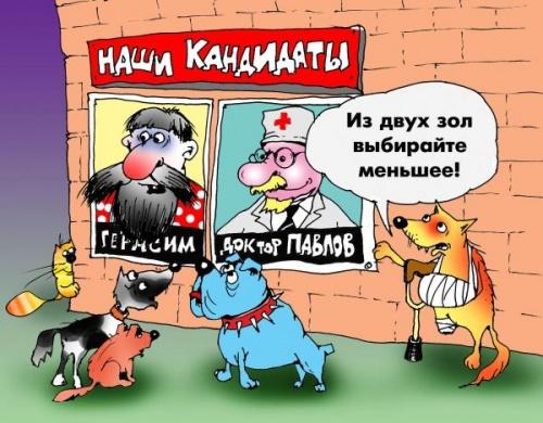 Картинки по запросу Карикатура выборы