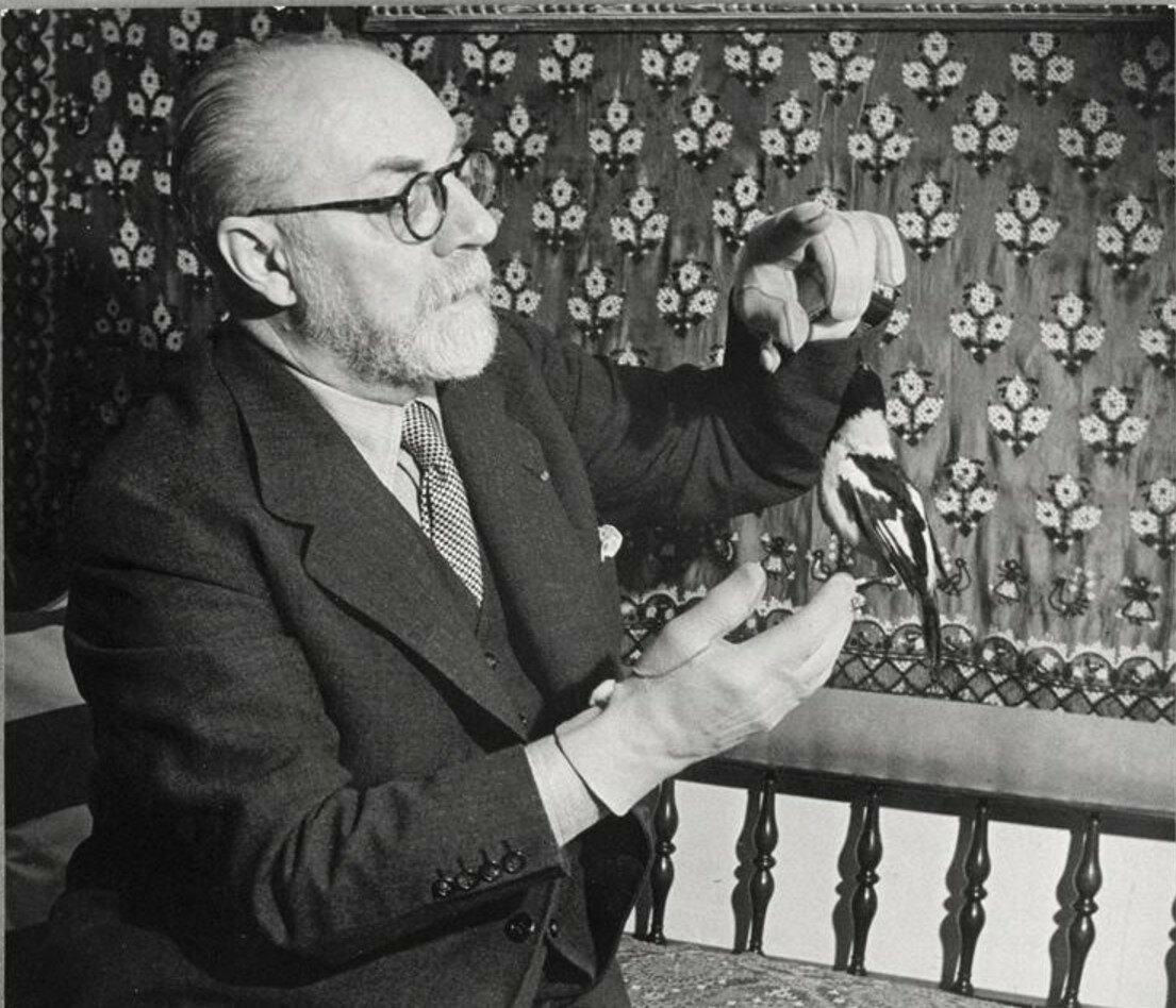 1932. Матисс играет с птицей в своей квартире на бульваре Монпарнас, 132