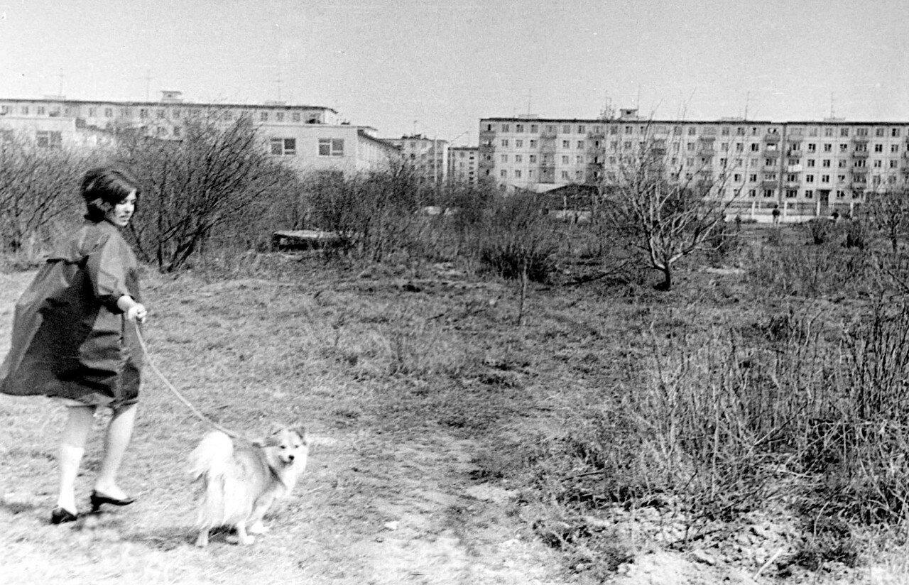 1970. Новомытищинский проспект