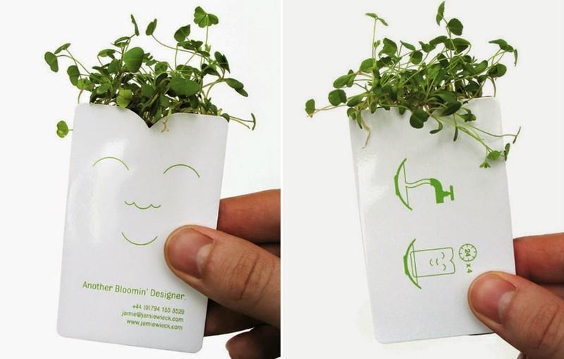 Ландшафтный дизайнер Если пакетик поместить в воду, то в нем вырастет зелень.
