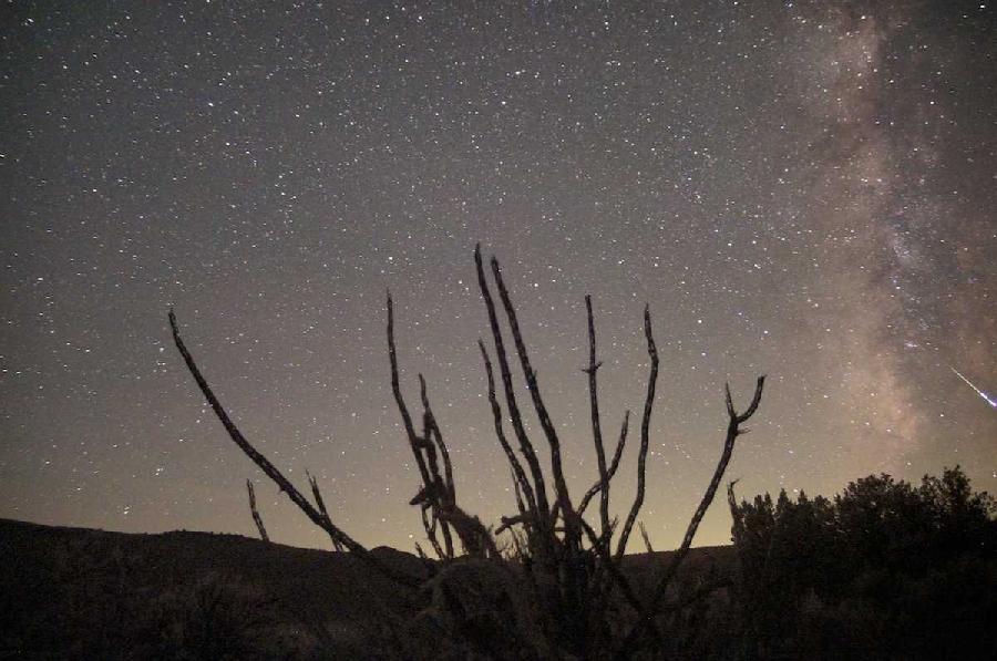 4. Дельта-Аквариды Дельта-Аквариды активны с июля по август. В ночном небе каждый час можно наблюдат