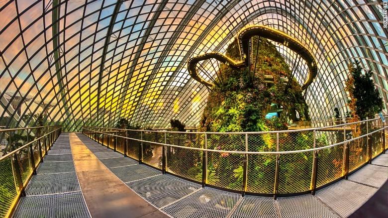 3. Чудеса природы. В Сингапуре можно полюбоваться огромным крытым водопадом, огромными деревьями, са