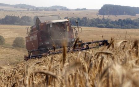 Украинские аграрии уже экспортировали 37,3 млн. тонн зерновых