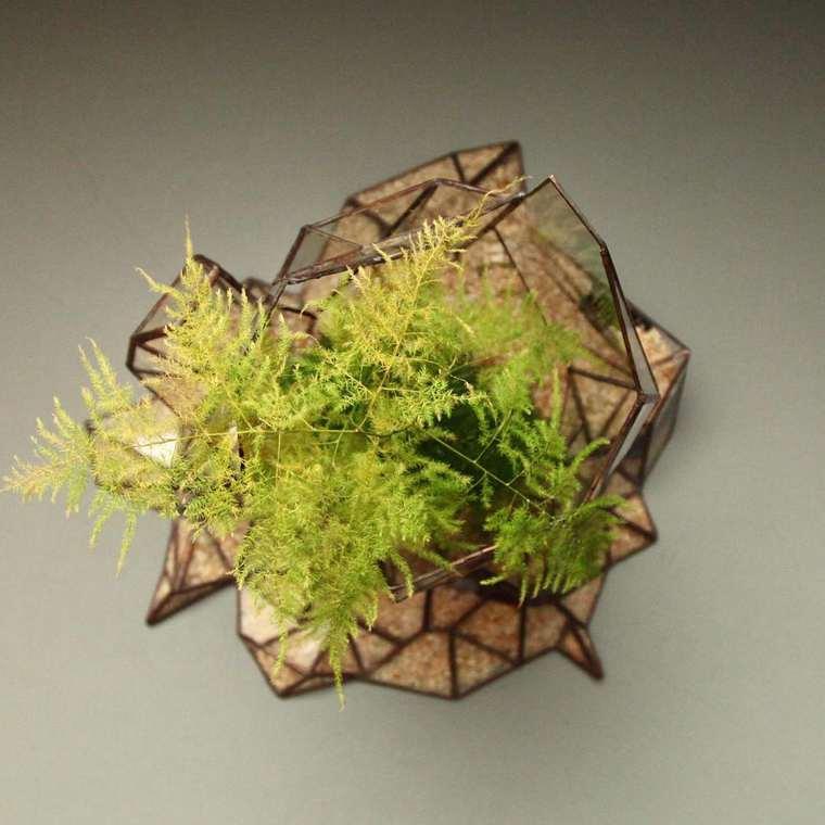 Beautiful terrariums by Nightshade Studio