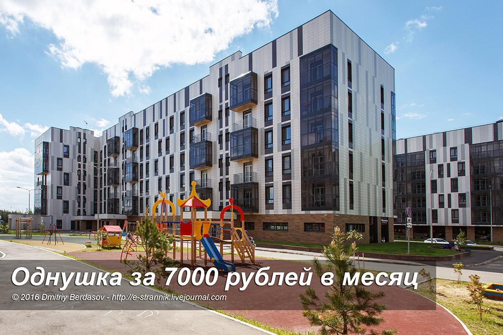 Однушка за 7000 рублей в месяц