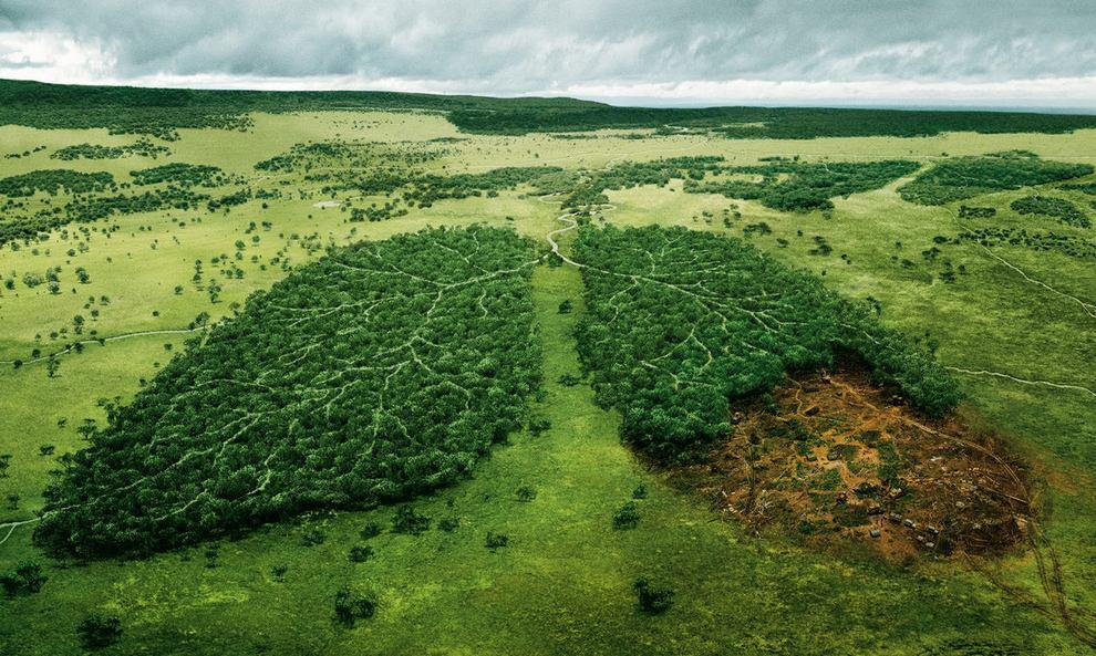 Образы перемен: последствия глобального потепления на снимках NASA