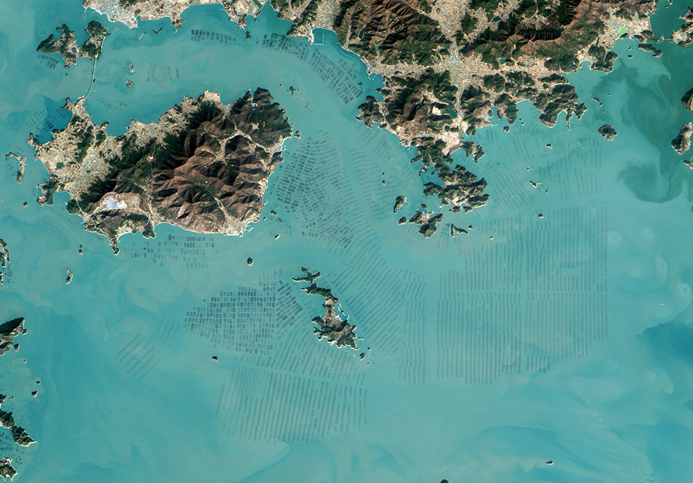Fascinating Satellite Photos of Seaweed Farms in South Korea