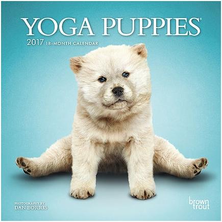 5639-9__YogaPuppies__BT_7MIN17_v06.indd