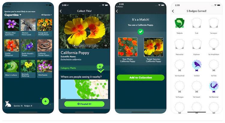 виды мобильное приложение натуралисты нейросети